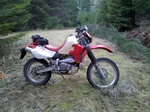 First DualSport Ride in 2013 - Santiam Loop (Almost)